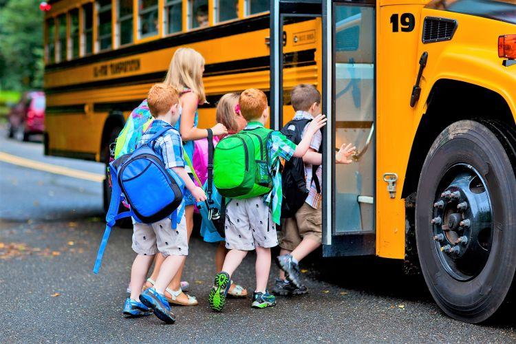 Правительство РФ установило правила  организованной перевозки группы детей автобусами